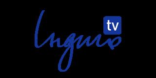 logo Індиго tv